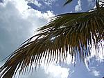 Foto Antigua Antigua_103