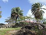Foto Antigua Antigua_122