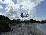 Foto Antigua Antigua_124
