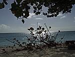 Foto Antigua Antigua_159