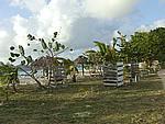 Foto Antigua Antigua_172