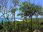 Foto Antigua Antigua_199