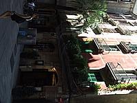 Foto Barcellona Barcellona_235