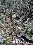 Foto Bedonia - Ceio e Acqua solforosa Ceio di Bedonia 019