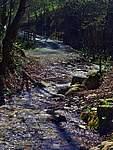 Foto Bedonia - Ceio e Acqua solforosa Ceio di Bedonia 031