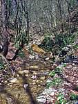Foto Bedonia - Ceio e Acqua solforosa Ceio di Bedonia 032