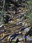 Foto Bedonia - Ceio e Acqua solforosa Ceio di Bedonia 047