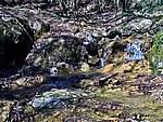 Foto Bedonia - Ceio e Acqua solforosa Ceio di Bedonia 050
