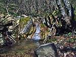 Foto Bedonia - Ceio e Acqua solforosa Ceio di Bedonia 072