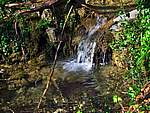 Foto Bedonia - Ceio e Acqua solforosa Ceio di Bedonia 073