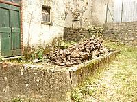 Foto Bedonia - Montarsiccio Montarsiccio_021