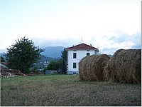 Foto Bedonia - Scorci ricordi_bedonia_089