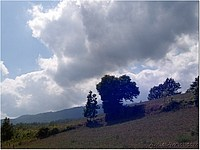 Foto Bedonia - Scorci ricordi_bedonia_091