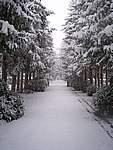 Foto Bedonia 2004 Bedonia sotto la neve 2005 005