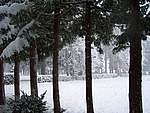 Foto Bedonia 2004 Bedonia sotto la neve 2005 006
