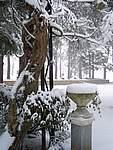 Foto Bedonia 2004 Bedonia sotto la neve 2005 007