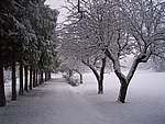 Foto Bedonia 2004 Bedonia sotto la neve 2005 012