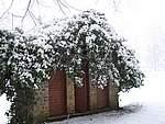 Foto Bedonia 2004 Bedonia sotto la neve 2005 013