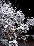 Foto Bedonia 2004 Bedonia sotto la neve 2005 10