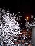 Foto Bedonia 2004 Bedonia sotto la neve 2005 11