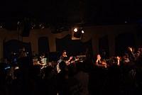 Foto Bo Live - 2013-01-26 Bo_Live_131