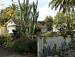 Foto California 2008 California_042