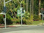 Foto California 2008 California_146