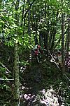 Foto Campionato Regionale Trial 2008 - Tarsogno Gara_Trial_2008_036