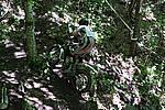 Foto Campionato Regionale Trial 2008 - Tarsogno Gara_Trial_2008_060