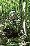 Foto Campionato Regionale Trial 2008 - Tarsogno Gara_Trial_2008_080