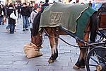 Foto Capodanno 2007-2008 Capodanno_2007-2008_044