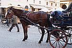 Foto Capodanno 2007-2008 Capodanno_2007-2008_081