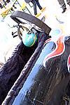 Foto Carnevale Borgotarese 2009 - Crazy Race Crazy_Race_2009_031