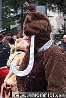 Foto Carnevale Borgotarese 2011 - Anteprima anteprima_carnevale_borgo_11_038