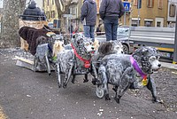 Foto Carnevale Borgotarese 2012 - Coppa del Sabione Coppa_Sabione_2012_036