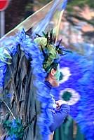 Foto Carnevale Borgotarese 2012 Carnevale_Borgotaro_2012_009