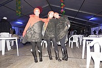 Foto Carnevale Borgotarese 2013 - Venerdi Grasso Carnevale_Venerdi_2013_138