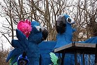 Foto Carnevale Borgotarese 2015 Carnevale_Borgotaro_2015_293