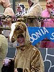 Foto Carnevale a Bardi 2007 Carnevale a Bardi 2007 026