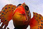 Foto Carnevale di Cento 2009 Carnevale_Cento_2009_175