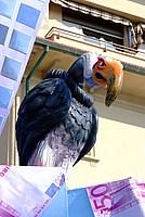 Foto Carnevale di Viareggio 2012 Carnevale_Viareggio_2012_006