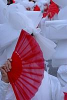 Foto Carnevale di Viareggio 2012 Carnevale_Viareggio_2012_174