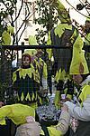 Foto Carnevale in piazza 2009 by Manuel Carnevale_Bedonia_2009_251