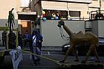 Foto Carnevale in piazza 2009 by Manuel Carnevale_Bedonia_2009_277