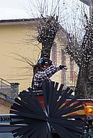 Foto Carnevale in piazza 2010 Carnevale_Bedonia_2010_693