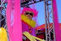 Foto Carnevale in piazza 2012 Carnevale_Bedonia_2012_0383