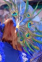 Foto Carnevale in piazza 2012 Carnevale_Bedonia_2012_0877