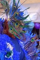 Foto Carnevale in piazza 2012 Carnevale_Bedonia_2012_0878