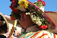 Foto Carnevale in piazza 2013 Carnevale_Bedonia_2013_0153