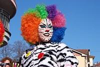 Foto Carnevale in piazza 2013 Carnevale_Bedonia_2013_0173